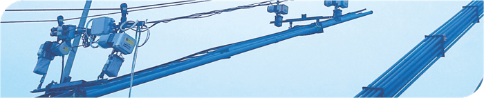 triphasic chain hoist use example