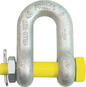 Dee - D or Chain - Shackle with Nut and Bolt